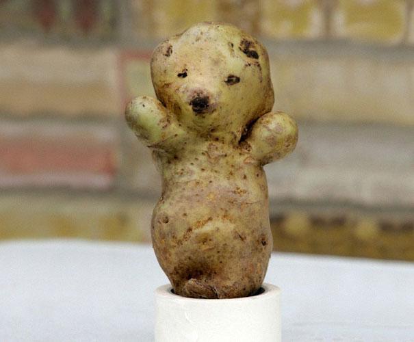 【食べ物おもしろ画像】かわいい! 食べるのがもったいなくなるクマみたいなジャガイモ(笑)