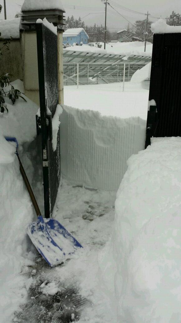 出れない! 大雪で門の前まで雪かきして門を開けた瞬間に絶望を感じる(笑)