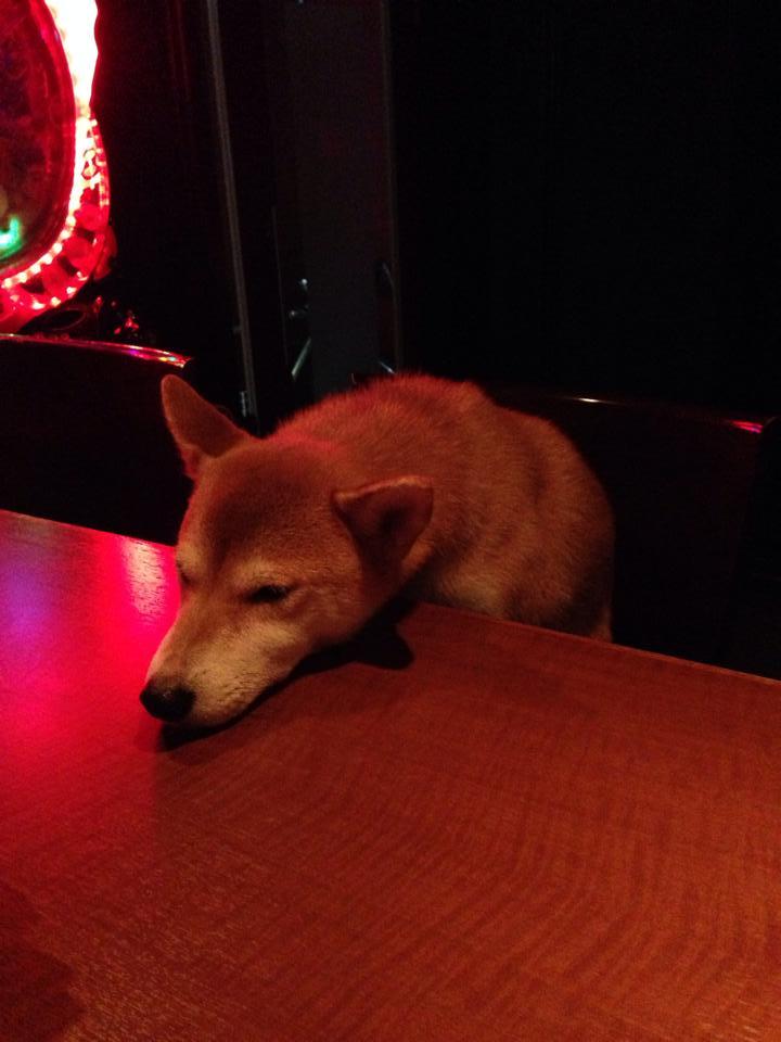 Bar Black Sheepの店長ハナちゃん