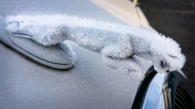 氷漬け! 車ジャガーのエンブレムが霜でモフモフになる(笑)