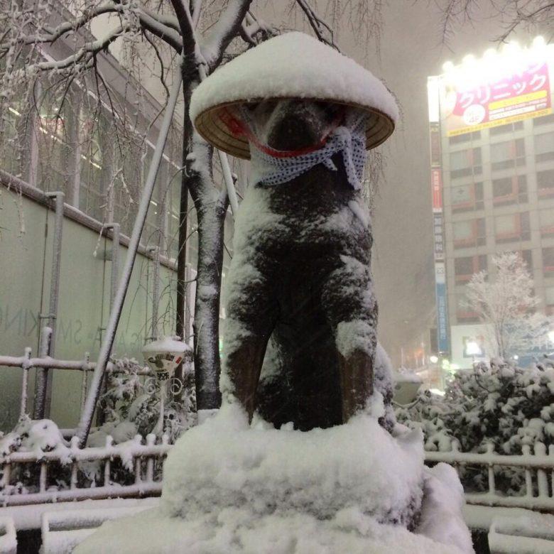 ありがとワン! 大雪で渋谷ハチ公に笠がプレゼントされる(笑)