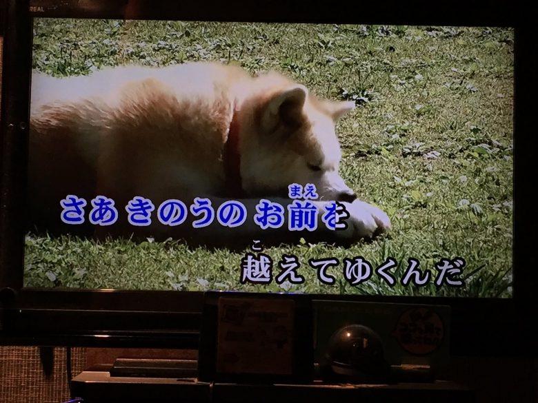 アニメ『銀牙 -流れ星 銀-』のカラオケ映像の犬がおもしろい(笑)
