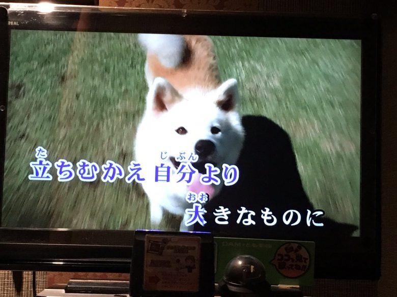 【犬おもしろ画像】アニメ『銀牙 -流れ星 銀-』のカラオケ映像の犬がおもしろい(笑)