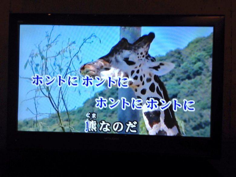 カラオケで富士サファリパークCMソングを歌った時のおもしろい映像(笑)