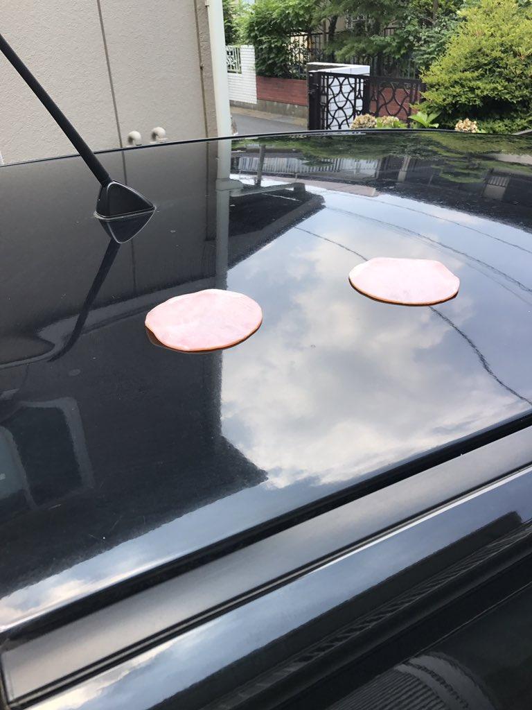 【猛暑の自動車おもしろ画像】夏に自動車のボンネットにハムを置いたらこんがり焼ける(笑)