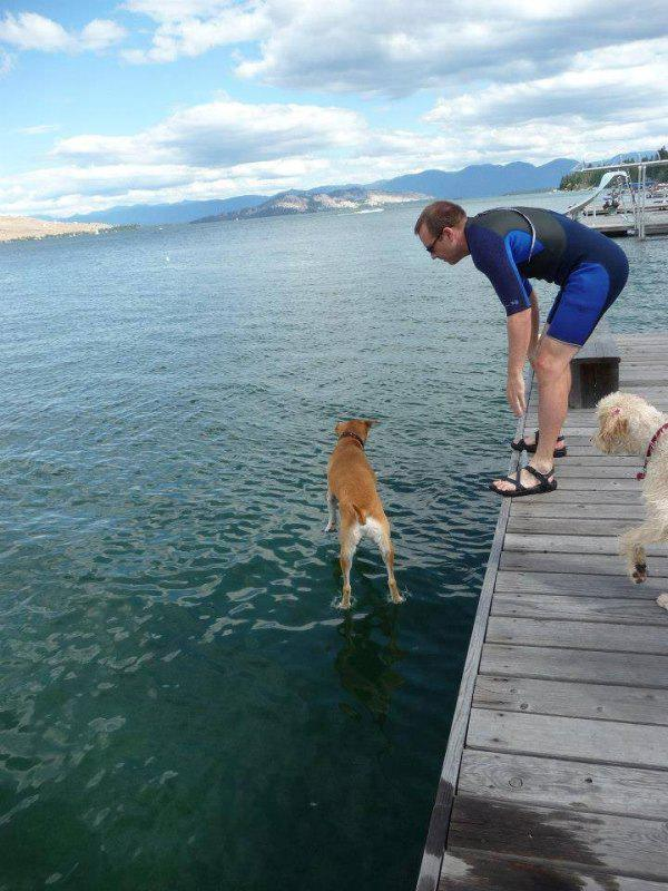 【海と犬おもしろ画像】海面に立つおもしろい犬(笑)
