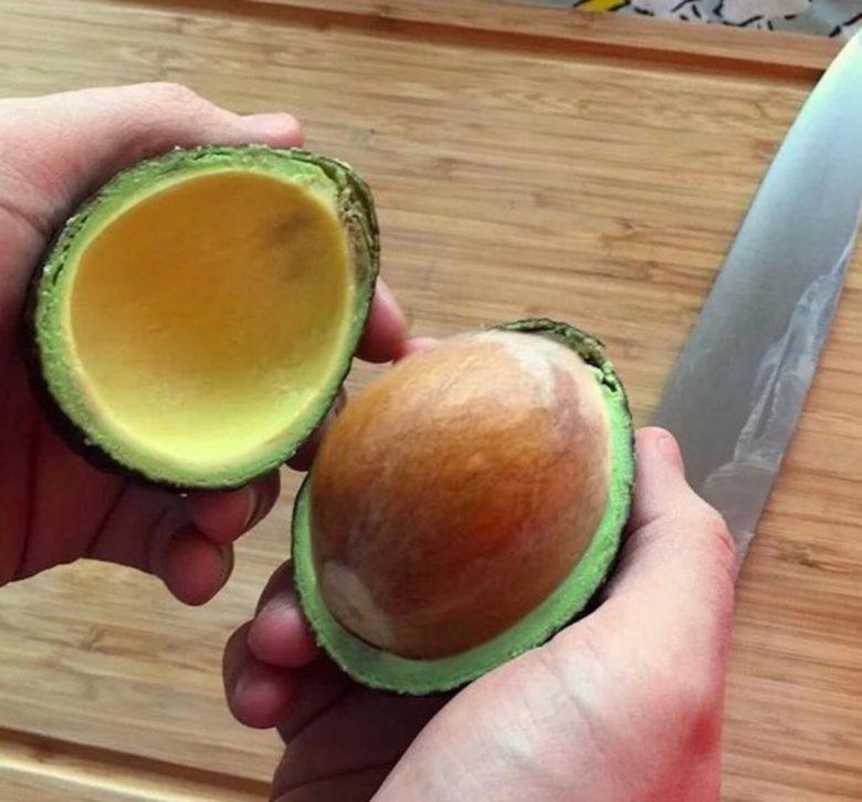 【食べ物おもしろ画像】食べるところがほとんどないアボカド(笑)