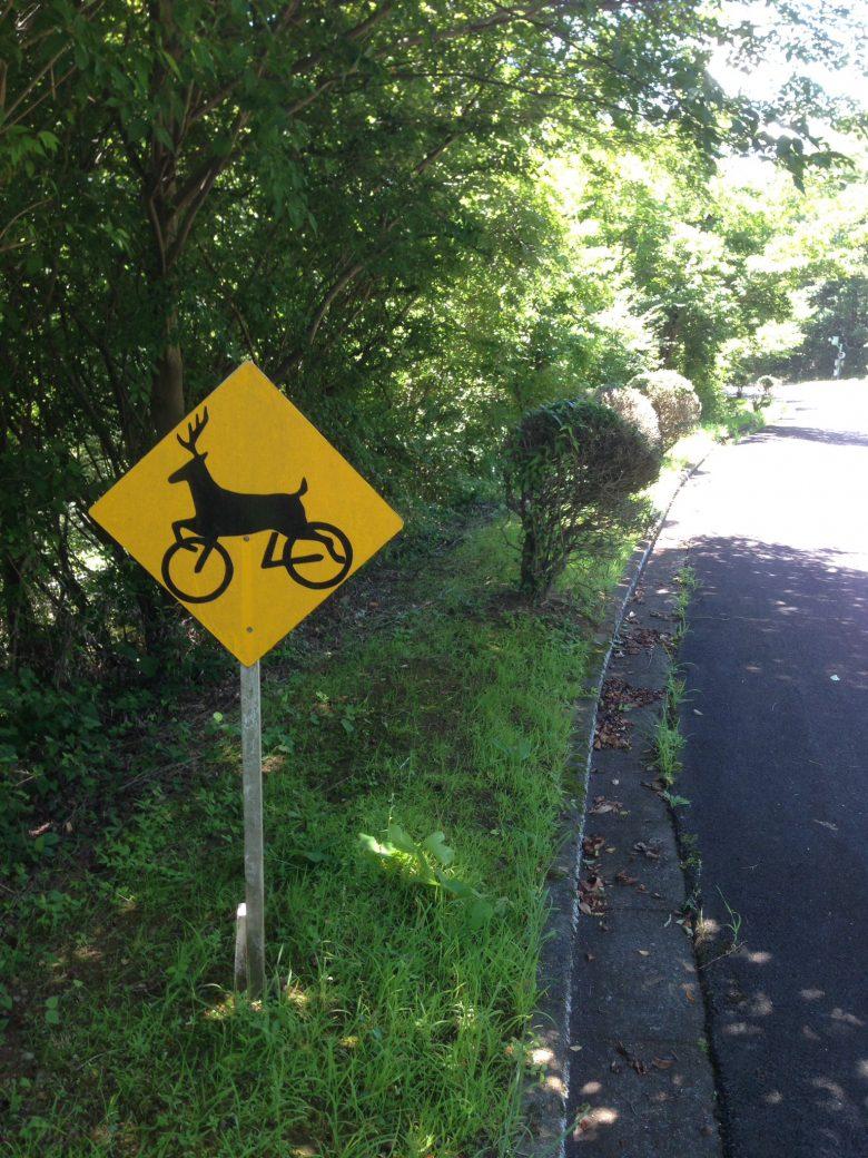 何が飛び出してくるのか分からないおもしろい道路標識(笑)