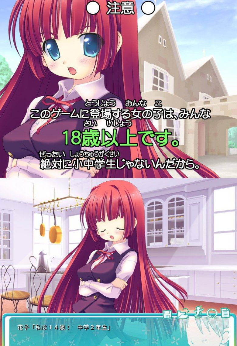 【ゲーム矛盾おもしろ画像】矛盾しているゲームに登場する女の子の年齢(笑)