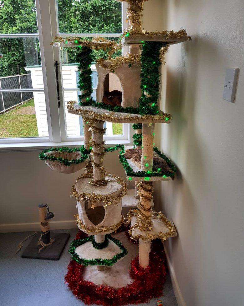 【猫クリスマスツリーおもしろ画像】猫が喜ぶキャットタワーのクリスマスツリー(笑)