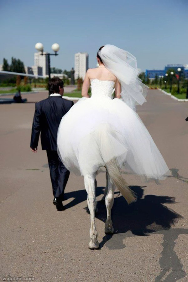 【結婚式おもしろ画像】まるでケンタウロスみたいな花嫁(笑)