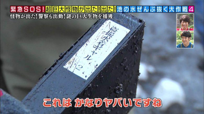 【テレビハプニングおもしろ画像】テレビ『池の水ぜんぶ抜く』で出てきたヤバいビデオ(笑)