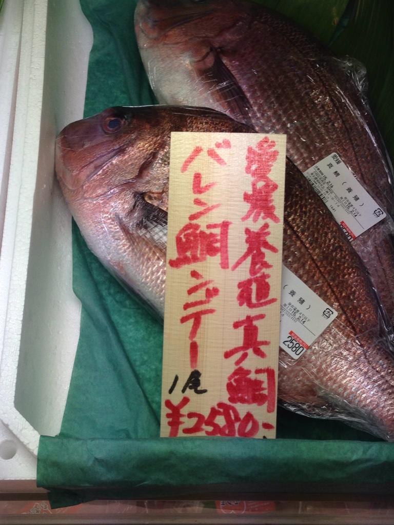 【バレンタインおもしろ画像】強引にバレンタインに関連付けられた魚(笑)