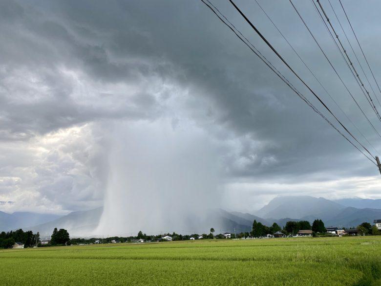 思わず見とれてしまうゲリラ豪雨の雨柱!