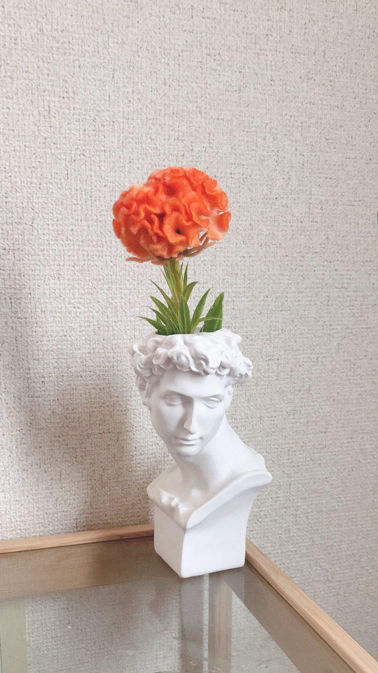花瓶のせいでホラー映画みたいになった花(笑)