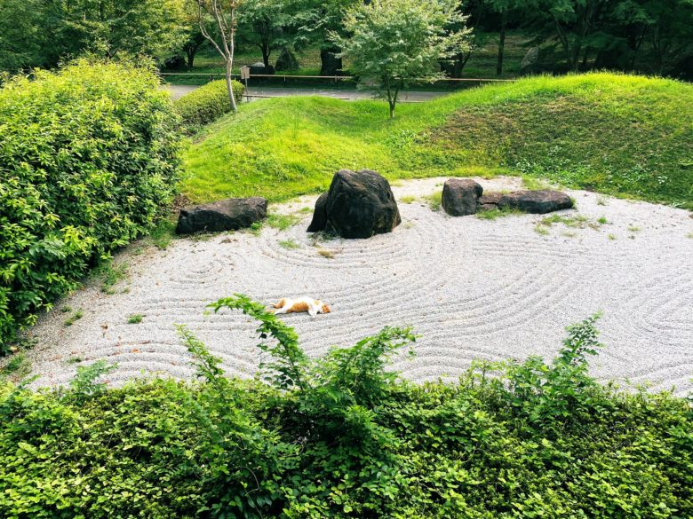 【猫おもしろ画像】お寺の庭園で枯山水の一部と化した猫(笑)