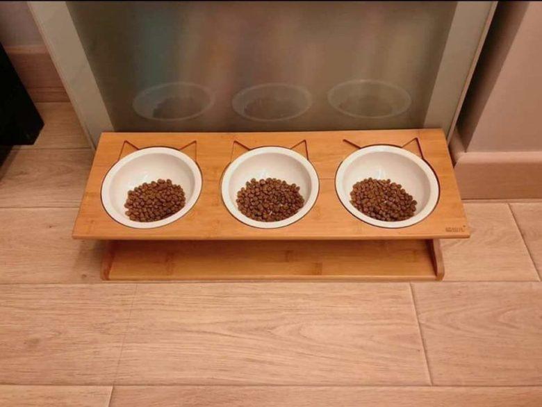 【猫おもしろ画像】おもしろいご飯の食べ方をする猫たち(笑)