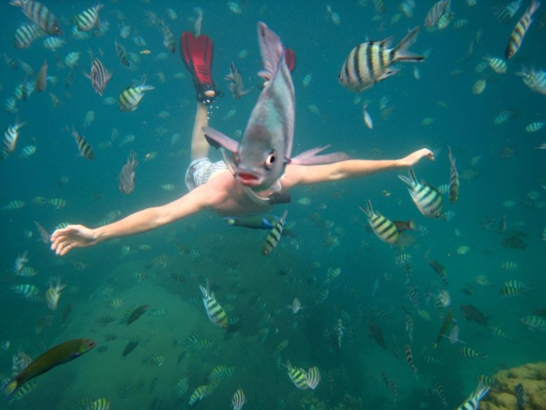 【海おもしろ画像】魚のせいで半魚人になったシュノーケリング風景(笑)