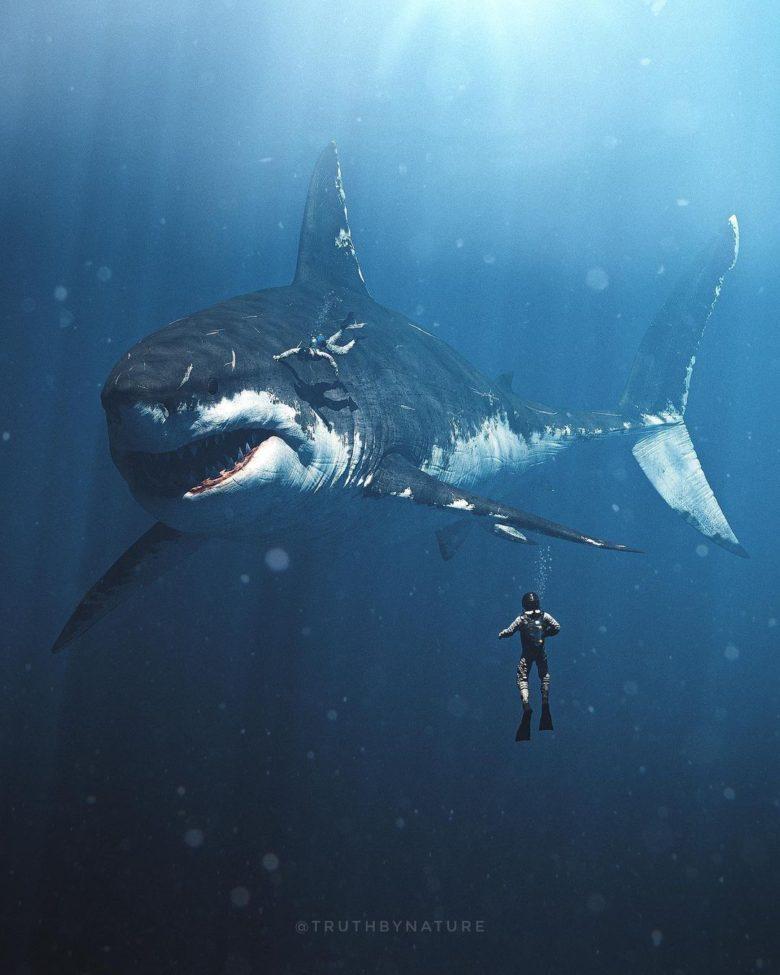 【海おもしろ画像】巨大な古代サメ「メガロドン」と触れ合う人たち(笑)