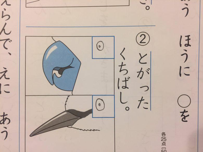 【問題珍回答おもしろ画像】正解に丸を付ける問題の子どもの珍回答(笑)